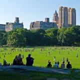 סנטרל פארק ניו יורק – המדריך המקיף